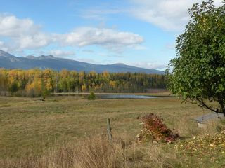 Photo 4: 668 Swan Lake Road | Kispiox Valley BC