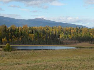 Photo 6: 668 Swan Lake Road   Kispiox Valley BC