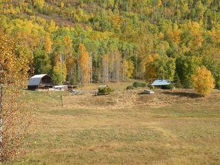 Photo 12: 668 Swan Lake Road   Kispiox Valley BC