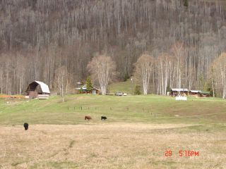 Photo 8: 668 Swan Lake Road | Kispiox Valley BC