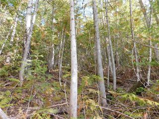 Photo 8: 6 Eagleview Road in Eagle Bay: Vacant Land for sale