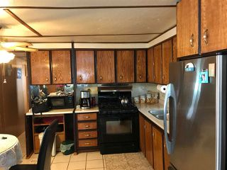 Photo 3: 41 8190 KING GEORGE BOULEVARD in Surrey: East Newton Manufactured Home for sale : MLS®# R2175089