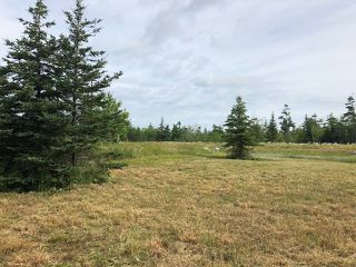 Photo 3: 1K1,1K2,1K3,1K Bissett Road in Cole Harbour: 16-Colby Area Vacant Land for sale (Halifax-Dartmouth)  : MLS®# 201818107
