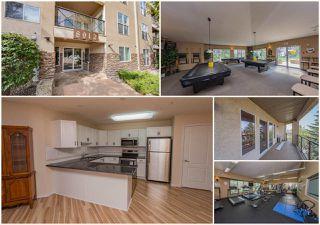 Main Photo: 305 8912 156 Street in Edmonton: Zone 22 Condo for sale : MLS®# E4123826