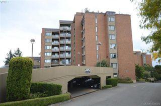Main Photo: 308 103 E Gorge Road in VICTORIA: Vi Burnside Condo Apartment for sale (Victoria)  : MLS®# 400005