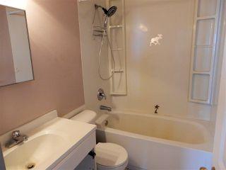 Photo 20: 54315 Range Road 261: Rural Sturgeon County House for sale : MLS®# E4147048