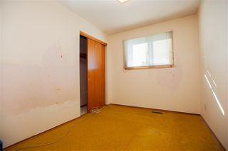 Photo 9: 13907 88 Street NW in Edmonton: Zone 02 House for sale : MLS®# E4147182