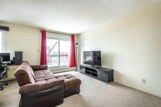 Photo 11: 206 10555 93 Street in Edmonton: Zone 13 Condo for sale : MLS®# E4147205