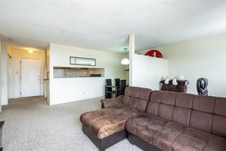 Photo 13: 206 10555 93 Street in Edmonton: Zone 13 Condo for sale : MLS®# E4147205