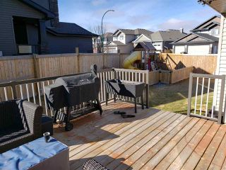 Photo 21: 54 DANFIELD Place: Spruce Grove House for sale : MLS®# E4152298