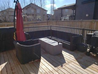 Photo 20: 54 DANFIELD Place: Spruce Grove House for sale : MLS®# E4152298