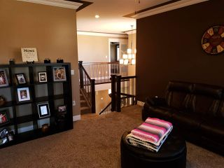 Photo 24: 54 DANFIELD Place: Spruce Grove House for sale : MLS®# E4152298