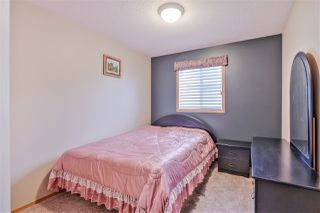 Photo 16: 8007 166 Avenue in Edmonton: Zone 28 House for sale : MLS®# E4156318