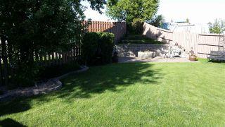 Photo 26: 17223 93 Street in Edmonton: Zone 28 House for sale : MLS®# E4157896