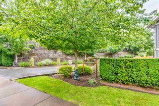 "Photo 30: 13 11282 COTTONWOOD Drive in Maple Ridge: Cottonwood MR Townhouse for sale in ""Meadows at Verigin's Ridge"" : MLS®# R2465231"