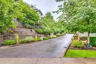 "Photo 31: 13 11282 COTTONWOOD Drive in Maple Ridge: Cottonwood MR Townhouse for sale in ""Meadows at Verigin's Ridge"" : MLS®# R2465231"