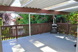 Photo 17: 24978 121 Avenue in Maple Ridge: Websters Corners House for sale : MLS®# R2476269