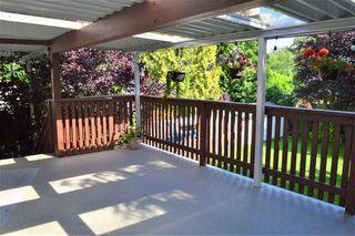 Photo 18: 24978 121 Avenue in Maple Ridge: Websters Corners House for sale : MLS®# R2476269