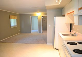 Photo 22: 24978 121 Avenue in Maple Ridge: Websters Corners House for sale : MLS®# R2476269