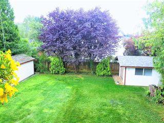 Photo 29: 24978 121 Avenue in Maple Ridge: Websters Corners House for sale : MLS®# R2476269