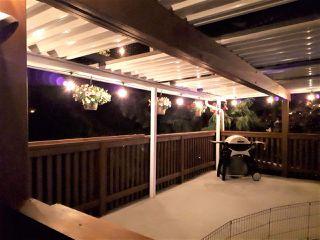 Photo 19: 24978 121 Avenue in Maple Ridge: Websters Corners House for sale : MLS®# R2476269