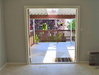 Photo 16: 24978 121 Avenue in Maple Ridge: Websters Corners House for sale : MLS®# R2476269