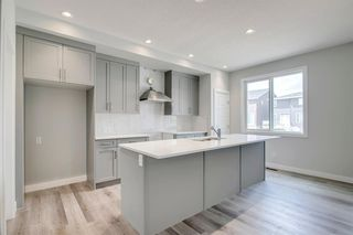 Photo 12: 173 evanston Hill NW in Calgary: Evanston Semi Detached for sale : MLS®# A1019504