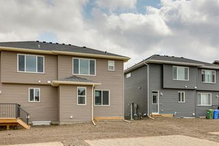 Photo 37: 173 evanston Hill NW in Calgary: Evanston Semi Detached for sale : MLS®# A1019504