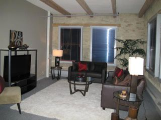 Photo 4: 167 Bannatyne Avenue in WINNIPEG: Central Winnipeg Condominium for sale : MLS®# 1118067