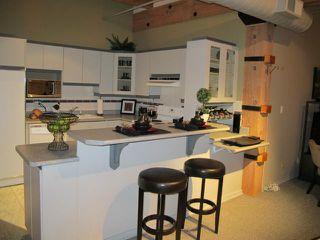 Photo 9: 167 Bannatyne Avenue in WINNIPEG: Central Winnipeg Condominium for sale : MLS®# 1118067