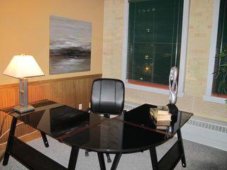 Photo 14: 167 Bannatyne Avenue in WINNIPEG: Central Winnipeg Condominium for sale : MLS®# 1118067