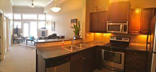 Photo 4: 424, 10124 - 80 Avenue: Edmonton Condo for sale : MLS®# E3351633
