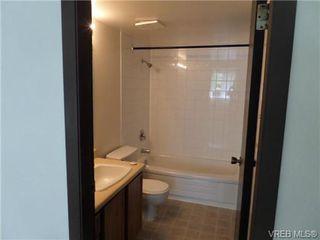 Photo 8: 101 1060 Linden Ave in VICTORIA: Vi Rockland Condo for sale (Victoria)  : MLS®# 707407