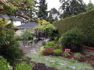 Photo 19: 773 Haliburton Rd in VICTORIA: SE Cordova Bay House for sale (Saanich East)  : MLS®# 718798