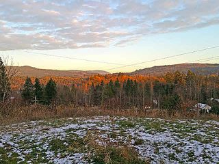 Photo 3: 9865 286 Street in Maple Ridge: Whonnock Land for sale : MLS®# R2064964
