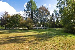 """Photo 16: 5293 249B Street in Langley: Salmon River House for sale in """"Salmon River Uplands"""" : MLS®# R2109536"""