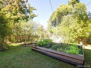 Photo 14: 349/51 Kipling St in VICTORIA: Vi Fairfield West Full Duplex for sale (Victoria)  : MLS®# 744993