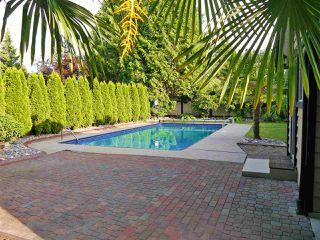Photo 4: 12218 211 Street in Maple Ridge: Northwest Maple Ridge House for sale : MLS®# R2181931