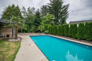 Photo 3: 12218 211 Street in Maple Ridge: Northwest Maple Ridge House for sale : MLS®# R2181931
