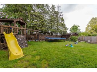 """Photo 19: 3767 SANDY HILL Road in Abbotsford: Abbotsford East House for sale in """"Sandy Hill"""" : MLS®# R2267138"""