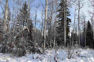 """Photo 16: 1 3000 DAHLIE Road in Smithers: Smithers - Rural Land for sale in """"Mountain Gateway Estates"""" (Smithers And Area (Zone 54))  : MLS®# R2280132"""