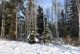 """Photo 13: 1 3000 DAHLIE Road in Smithers: Smithers - Rural Land for sale in """"Mountain Gateway Estates"""" (Smithers And Area (Zone 54))  : MLS®# R2280132"""