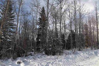 """Photo 18: 1 3000 DAHLIE Road in Smithers: Smithers - Rural Land for sale in """"Mountain Gateway Estates"""" (Smithers And Area (Zone 54))  : MLS®# R2280132"""