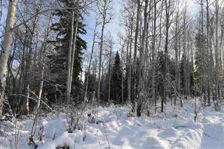 """Photo 14: 1 3000 DAHLIE Road in Smithers: Smithers - Rural Land for sale in """"Mountain Gateway Estates"""" (Smithers And Area (Zone 54))  : MLS®# R2280132"""