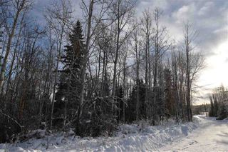 """Photo 17: 1 3000 DAHLIE Road in Smithers: Smithers - Rural Land for sale in """"Mountain Gateway Estates"""" (Smithers And Area (Zone 54))  : MLS®# R2280132"""
