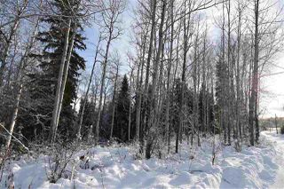 """Photo 15: 1 3000 DAHLIE Road in Smithers: Smithers - Rural Land for sale in """"Mountain Gateway Estates"""" (Smithers And Area (Zone 54))  : MLS®# R2280132"""