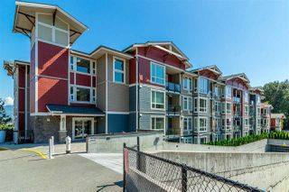 """Main Photo: 206 2242 WHATCOM Road in Abbotsford: Abbotsford East Condo for sale in """"Waterleaf"""" : MLS®# R2288895"""