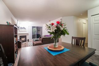 "Photo 8: 210 525 AGNES Street in New Westminster: Downtown NW Condo for sale in ""AGNES TERRACE"" : MLS®# R2329371"