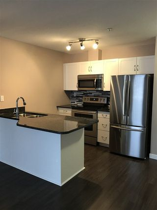 Photo 4: 216 4310 33 Street: Stony Plain Condo for sale : MLS®# E4140469