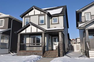 Main Photo: 939 Crystallina Nera Way in Edmonton: Zone 28 House for sale : MLS®# E4140533